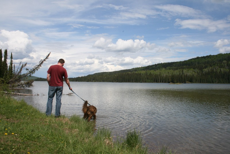 Gregg Lake William A Switzer Park Alberta
