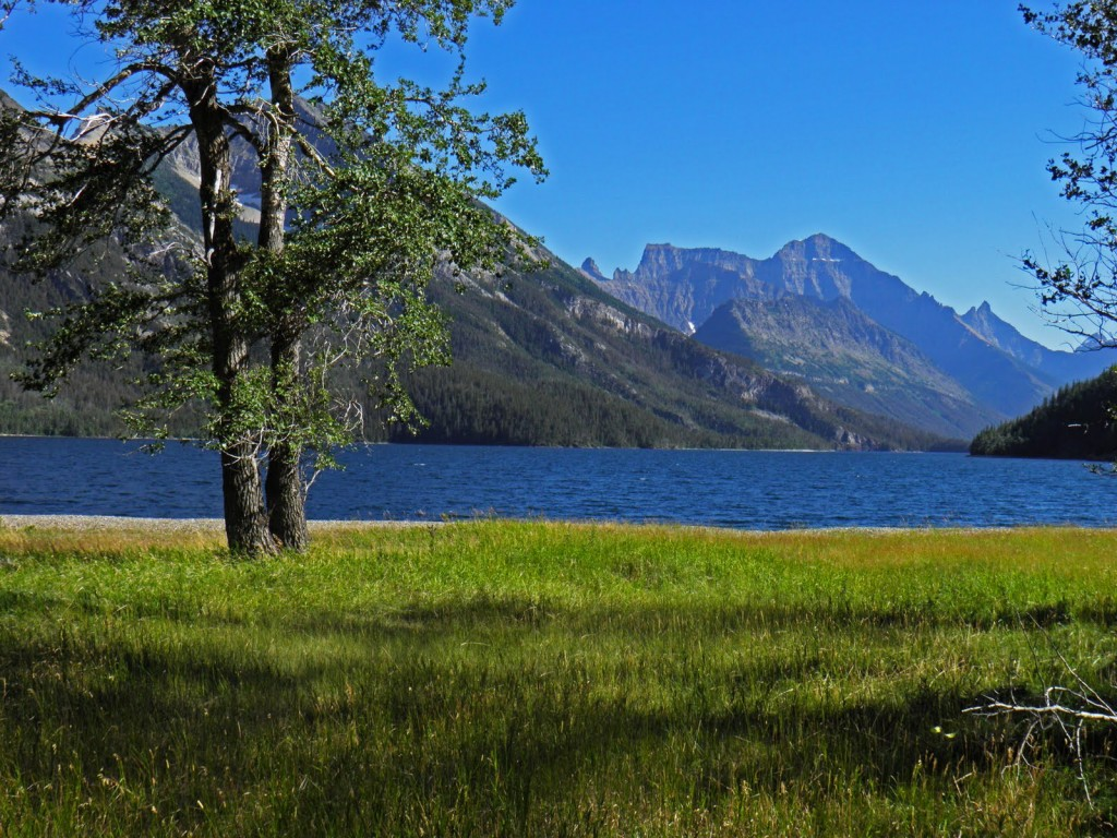 View of Mt Cleveland from Waterton Townsite Campground