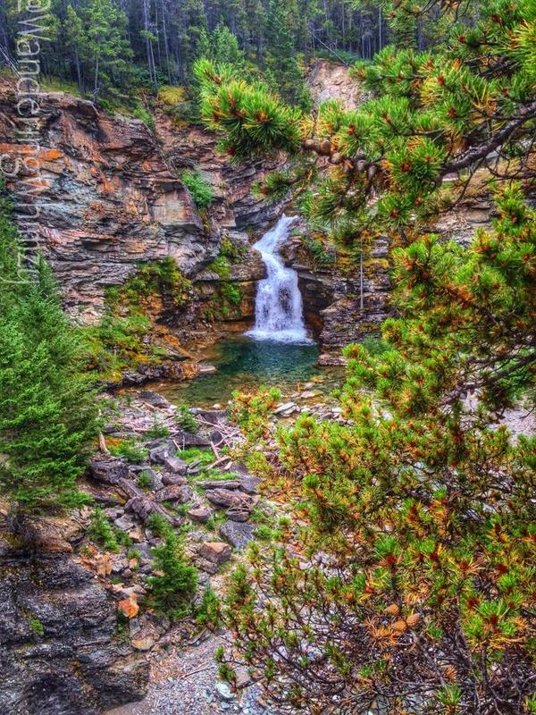 The Blakiston Falls Trail offers several amazing views. It would be a great picnic spot.