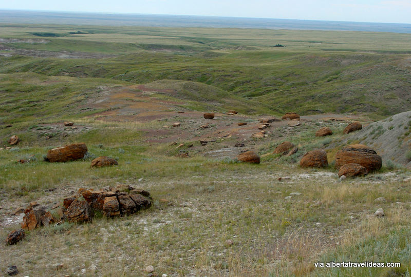 Prairie view at Red Rock Coulee Natural Area