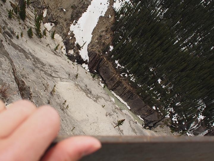 Vertical downward view of the Jasper Park from Glacier Skywalk