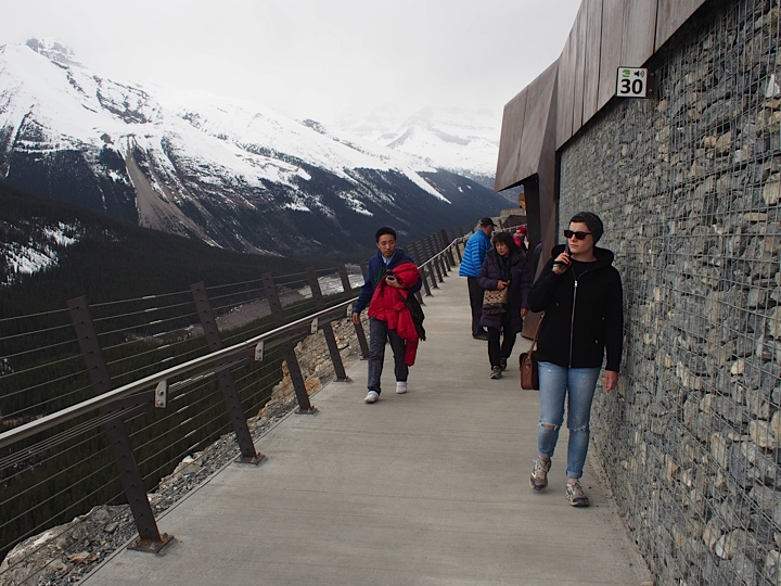 listening to the audio guide for the 400 metre Discovery Trail - Glacier Skywalk, Jasper