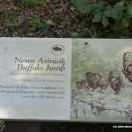 Buffalo Jump, Wanuskewin Heritage Park