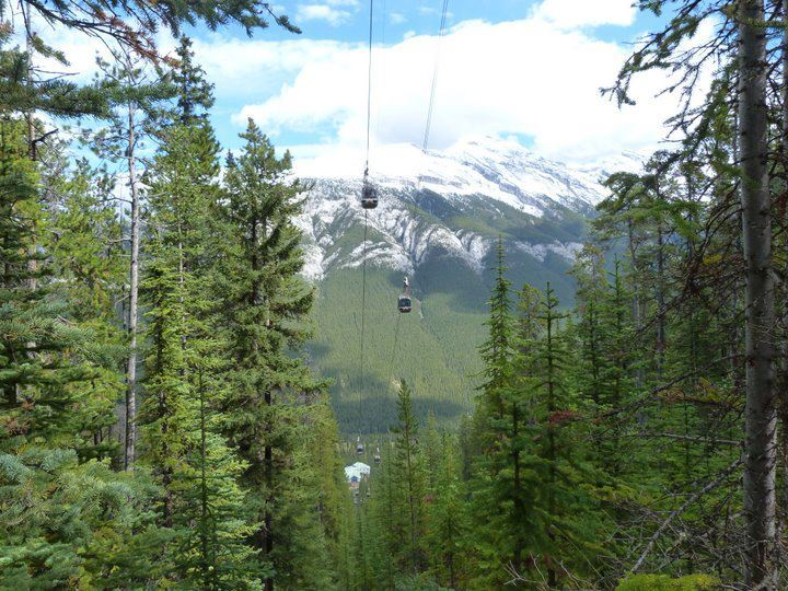 The view of the gondolas from the trail route