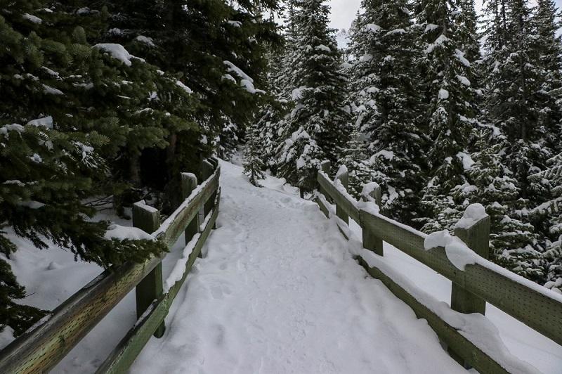 winter hike to peyto lake