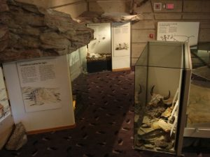The Head-Smashed-In interpretive center
