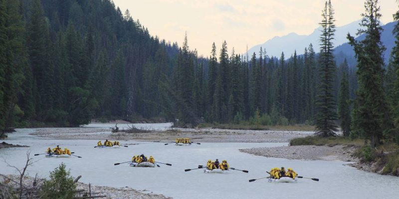 kicking horse white water rafting_wild water adventures